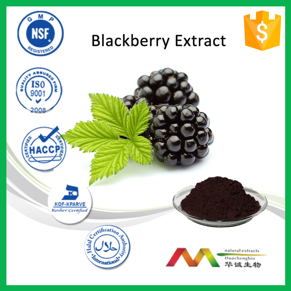 100% natural Red Beet Root Extract / Beet Root Red Color
