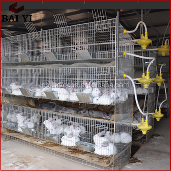 Easy Clean Commercial Rabbit Feeding Farming Cage