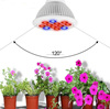 New arrival E27 12W LED Grow Light 12 LEDs AC 85 - 265V LED Plant Growing Lamp With Full Spectrum For Indoor Plant