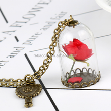 New fashion Beauty and the Beast long charm Necklace Glass Vial Necklace Little Prince Rose