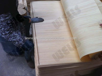 ISO CE certification good quality low price sliced cut natural color recon gurjan veneer