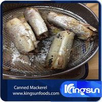 Delicious Frozen canned mackerel fish in brine