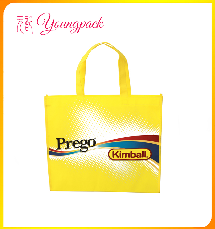 Factory Price High Quality custom cheap laundry non woven bag
