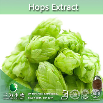 Top Quality Hops Flower Extract 5:1 10:1 20:1, Hops Flower Powder 4:1 5:1 10:1 20:1, HPLC
