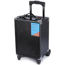 2015 portable speaker with trolley and wheels and USB/SD/FM/ WIRELESS MIC / good bass and power