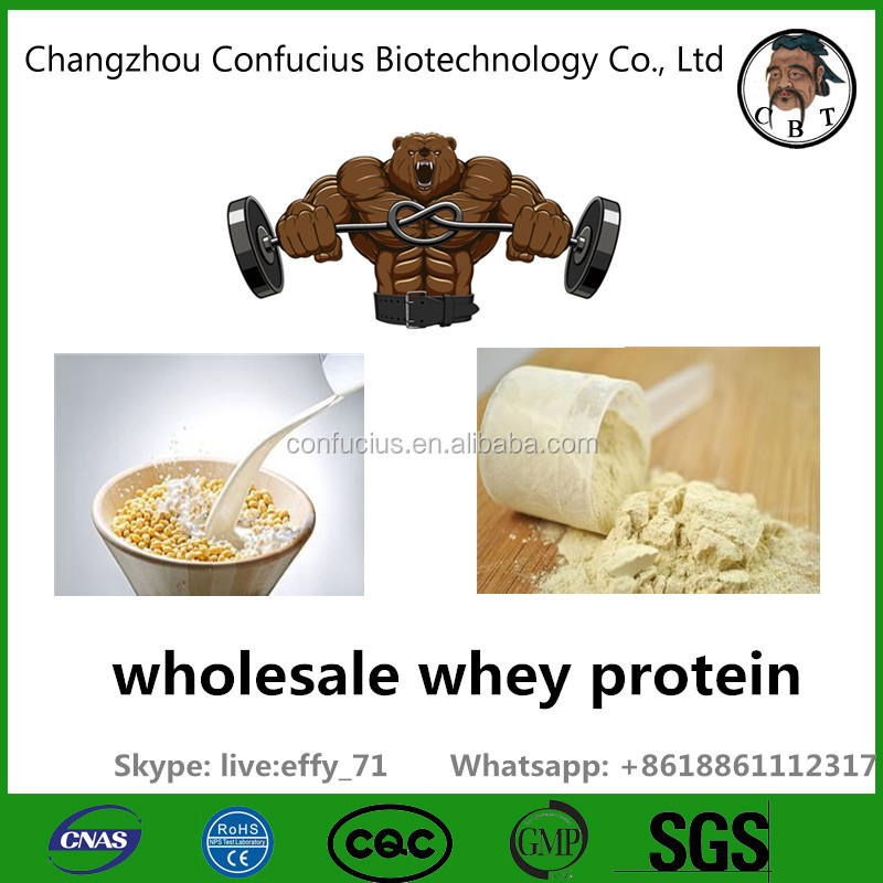 Wholesale Whey Protein Isolate 90% organic Whey Protein bulk Concentrate Powder
