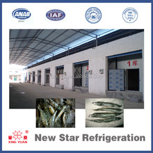 Blast chiller freezer cold room for fish meat sea food