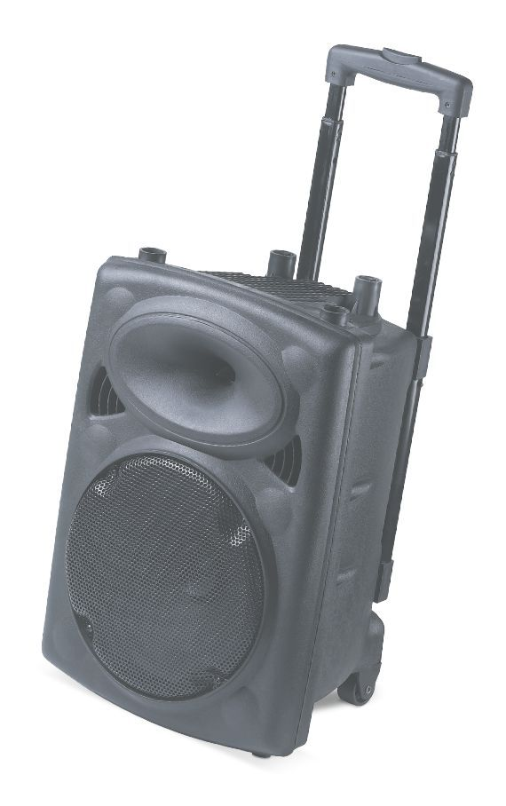 "2015 new product in china portable speaker with 10"" speaker drivers"