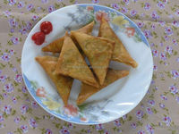Frozen Curry Samosa / Spicy Taste Spring Roll