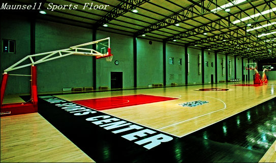 Waterproof basketball court mat in Artificial Grass and Sports Flooring