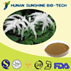 Free samples avaliable Black cohosh extract Triterpene Glycoside/Triterpenoid Saponis
