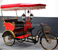 2015 sightseeing and passenger use electric rickshaw front passenger