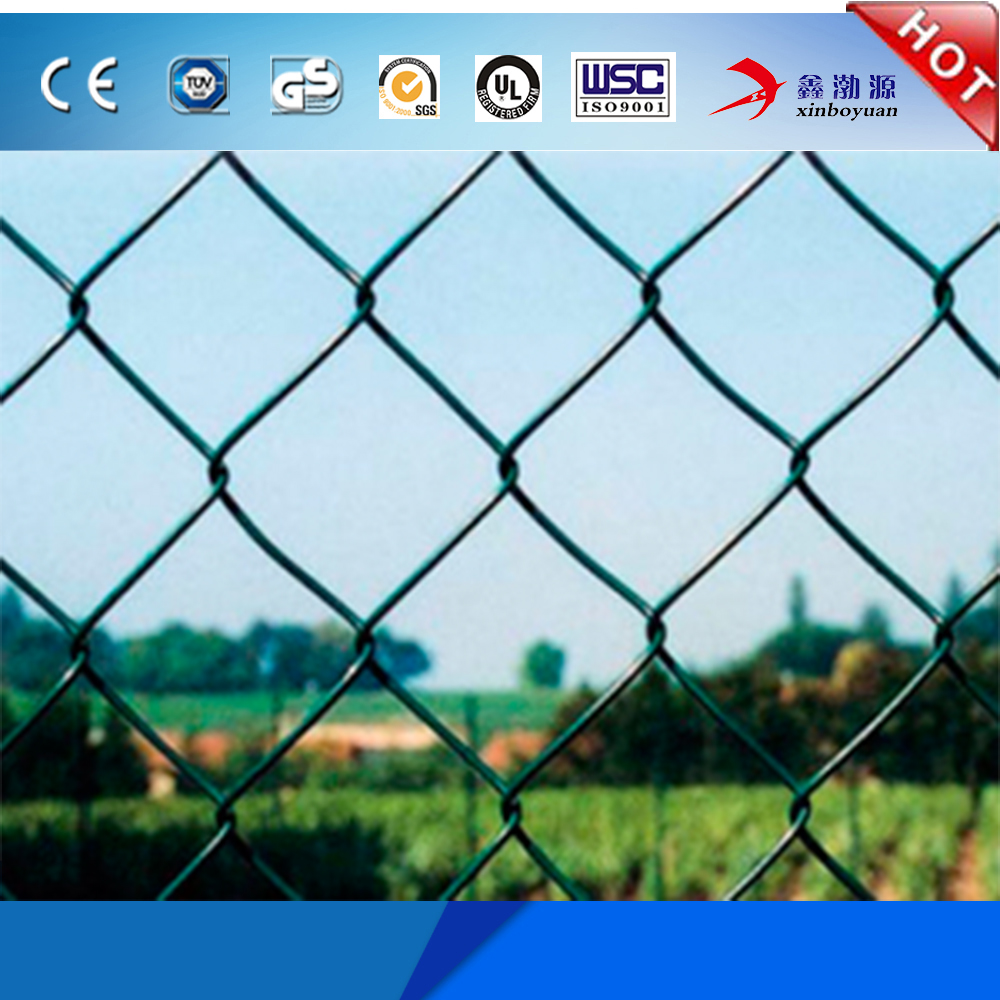 high quality best price PVC/PE coated electro/hot dip galvanized diamond wire mesh/chain link dog kennel lowes sale (factory)