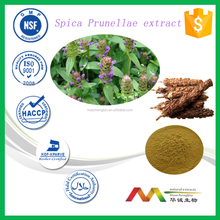 NSF-cGMP Manufacturer Natural Free Sample Selfheal Extract