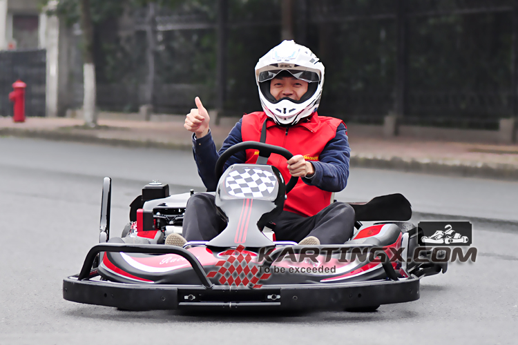 High speed 125cc/ 200cc /270cc cheap adult racing go kart with steel bumper and safety belts