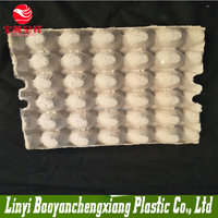 paper egg tray price for Thailand market