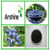 Supply Pure nature Blueberry Extract (5% - 25%Anthocyanidins )with GMP standard