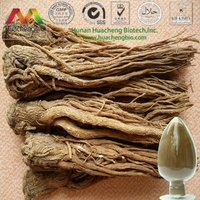 ISO&GMP 1% Ligustilides Angelica Root Extract