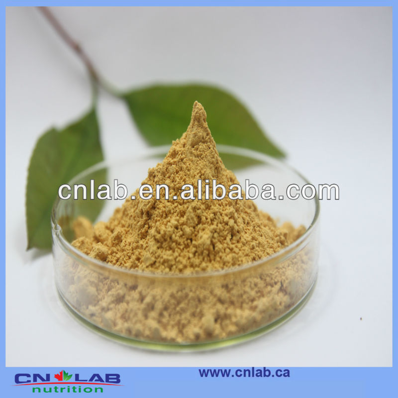 High Quality bupleurum falcatum root extract with 5% Saikosaponins