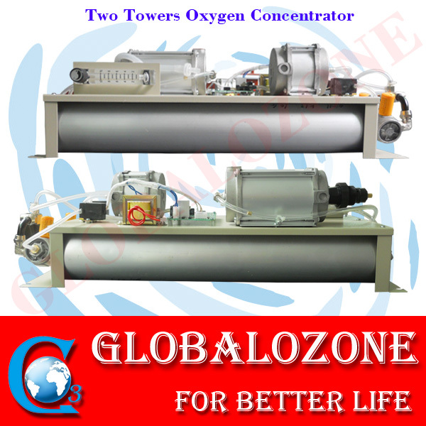 2 Towers Oxygen Concentrator with Manual Testing