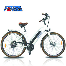 Fantas-Bike Battery Electric Bike