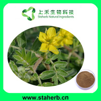 Tribulus Extract with saponin glycosides 90%