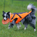 Autumn and winter pet clothes fashionable outdoor dog clothing, waterproof, wear-resistant,