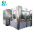 3 in 1 Automatic 1 gallon PET Bottle Pure / Mineral Water Bottling Filling machine