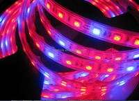 2015 3 Years Warranty High Quality Flexible 12 Volt Smd 5050 Rgb Led Strip with factory price