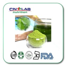 Wholesale supplier of natural bulk mulberry leaf extract powder 1-Deoxynojirimycin