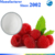 100% natural organic powder Raspberry ketone for weight loss