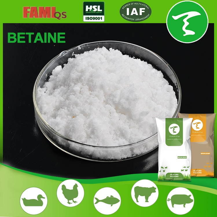 Betaine HCL 96% 98% with good price