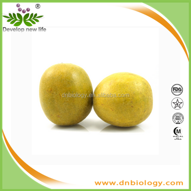 100% Pure Organic Monk Fruit Mogroside V Monk Fruit Extract Powder Monk Fruit Extract