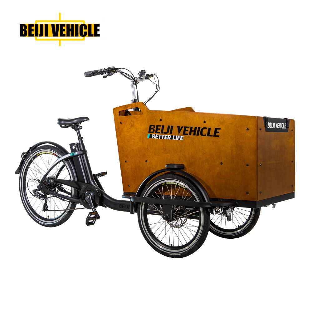 Beiji new model three wheel electric cargo bike with classic design