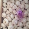 /product-detail/fresh-chinese-3p-5p-dehydrated-pure-white-garlic-for-sale-60767874072.html
