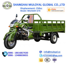 250cc Hot Sale Chinese Tricycle Motor Tricycle for Cargo for sale with Guard Bar