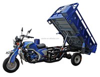 2014 year 175cc/200cc/250cc dump three wheel motorcycle/cargo tuk tuk