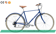 Enwe New Product Classic City Bike with Freestyle Single Speed Bike City Road Bike for Adults