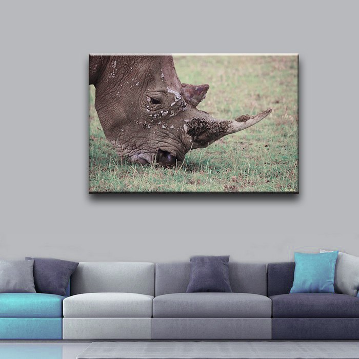 Wholesale rhinoceros head modern decoration free fabric painting designs