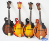 /product-detail/wholesale-high-quality-solid-mandolin-musical-instrument-mandolin-for-sale-maf008-60500924178.html