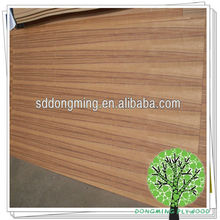 Teak veneer fancy plywood/teak trees for sale