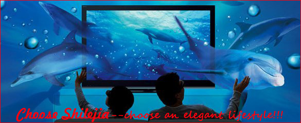 "Low Price 16:9 250"" Large Frame Projector Screen 3D Wall Mount For Meeting"
