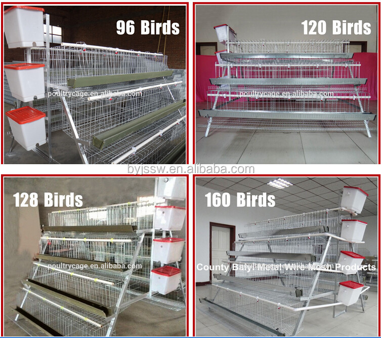 Multi-tier and Ladder Frame Steel Layer Chicken Coop For Sale
