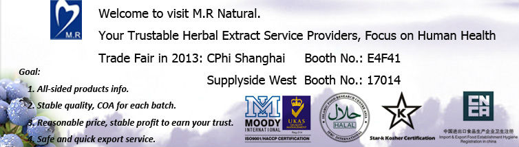 Leading Manufacturer for Bilberry Extract 25% Accepted by US&Canada Market