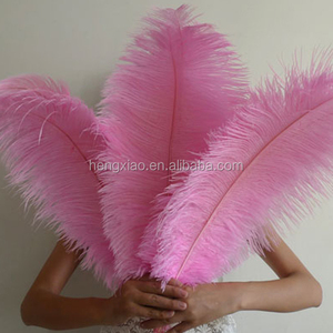 pink ostrich feather cheap for wholesale feathers sale