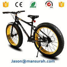 2015 new 20-inch 4.0 super wide tire speed atv snowmobiles male and female students mountain bike
