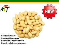 wholesale peanut with good quality ,the best price peanut price