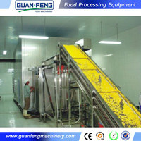 flash freezer / iqf onion diced machinery / vegetable quick freezing equipment