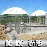 China Biogas Plant, Digester Membrane Roof, Biogas From Vegetable Waste