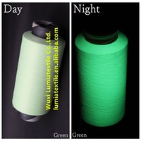 green highlight luminous DTY Polyester glow in the dark